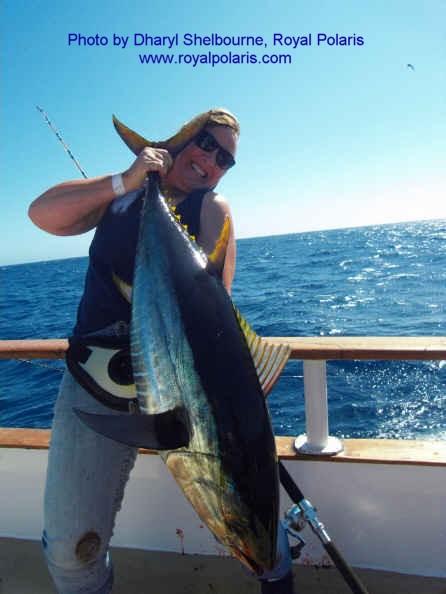 Queen of hearts sportfishing fishing report pillar point for Royal polaris fishing
